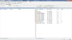 WinSCP Beispielpfad der pls Dateien